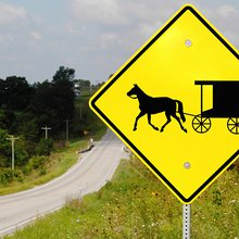 Holtwood woman dies after horse-drawn buggy hit by tractor-trailer