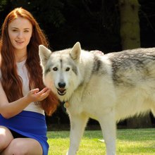 Warwickshire Game of Thrones teen actress adopts co-star Zunni