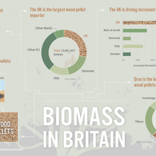 Investigation: Does the UK's biomass burning help solve climate change?