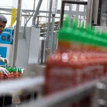 Sriracha, despite its legal woes, is a cultural icon that bites