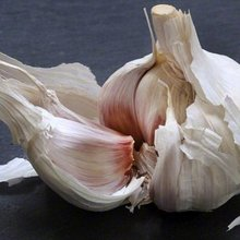 Forget aftershave, to charm the ladies eat garlic, says study