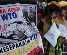 Disparate Voices at the WTO