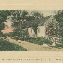 "The True Story Behind ""Mary Had a Little Lamb"" - Modern Farmer"