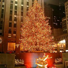 The Twelve Days Of Christmas - What Wall Street Gave To Me