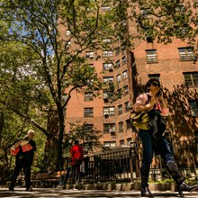 NYC's Public Housing was Turning a Corner. Then Came Donald Trump.