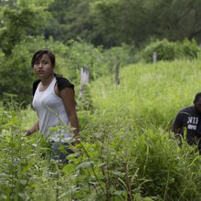 Is Trek of Undocumented Immigrant Children Safer Than Staying Home? - NBC News