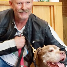 Man adopts 18-year-old dog: 'I couldn't let her spend 1 more night in the shelter'
