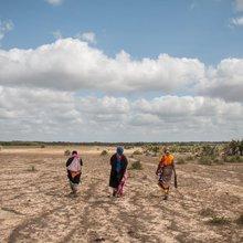 The hidden threat behind Kenya's worsening drought