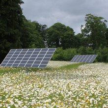 Conservation: Solar farms' greatest ally