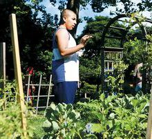 Cambridge City Sprouts: Sowing seeds for a healthy life