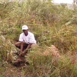 Isaac Khisa on Muck Rack