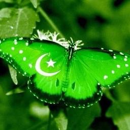 Sajjad Tarakzai on Muck Rack