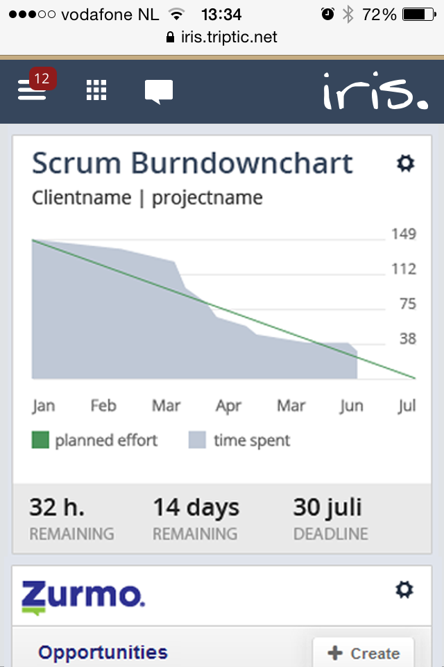 Shows basically just the scum burdndown chart on the related page on mobile