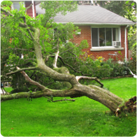 hire someone to remove construction and yard debris from your home