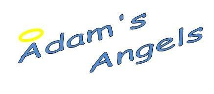 Register for the 2017 Adam's Angels 5k