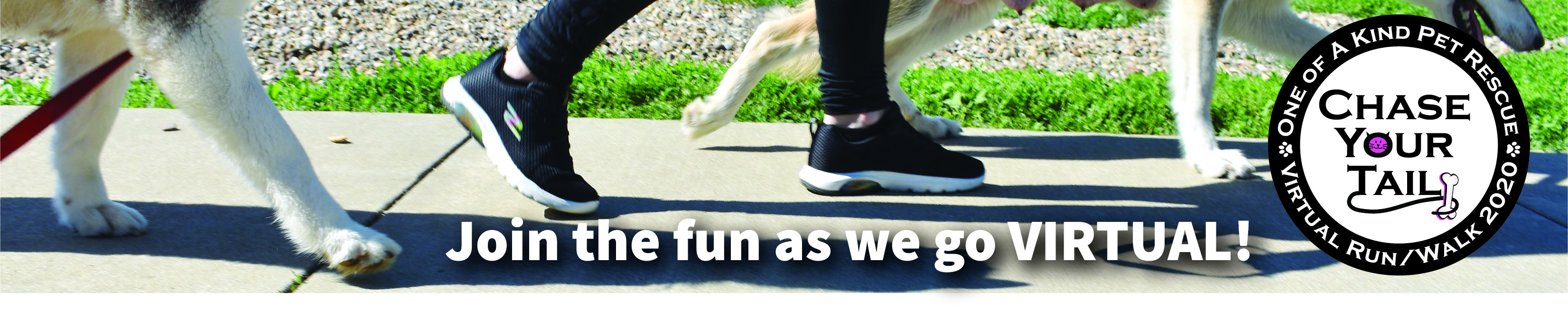 Register for the 2020 Virtual Chase Your Tail - 1 Mile Doggie Dash, 5K and 10K