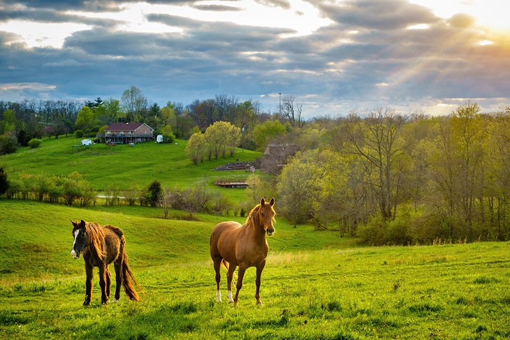 kentucky-pictures-most-beautiful-places-to-visit-kentuckys-bluegrass-region