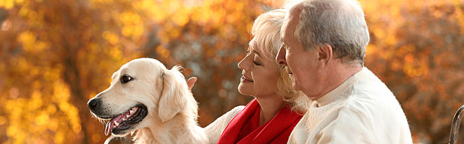 Older couple at the park with their dog