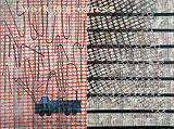 Work in Progress - Anjum  Singh - Summer Auction 2008