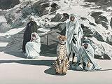 Existence of Instinct II - Shibu  Natesan - Autumn Auction 2011