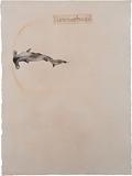 Hammerhead - Atul  Dodiya - 24 Hour Absolute Auction