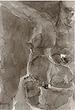 Akbar  Padamsee - 24 Hour: Absolute Auction