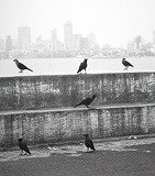 Marine Drive - Chirodeep  Chaudhuri - 24-Hour Online Absolute Auction: Editions