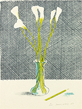 The Lilies - David  Hockney - Impressionist and Modern Art Auction