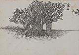 Untitled - Nandalal  Bose - Winter Online Auction