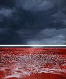 Kannuru (Storm) - Nataraj  Sharma - Contemporary Day Sale | Mumbai, Live