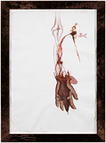 Untitled (hanging flayed arm) - Mithu  Sen - Kochi Muziris Biennale Fundraiser Auction | Mumbai, Live
