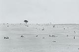 Waterwells - Gauri  Gill - Kochi-Muziris Biennale Fundraiser Auction | Mumbai, Live