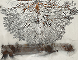 Tampered Branches - G R Iranna - Kochi-Muziris Biennale Fundraiser Auction | Mumbai, Live