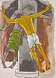 M F Husain - Spring Online Auction