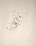 Head - Tyeb  Mehta - WORKS ON PAPER
