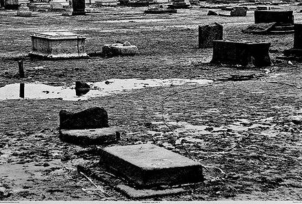 Immortal Death-Scapes, 2005-9