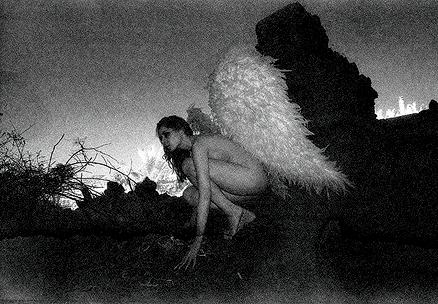 Flight from The Fallen Angel Series