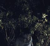Nandini Valli Muthiah-Lost