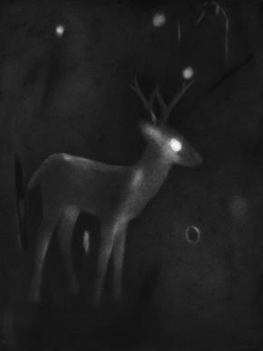 Untitled- 6, Night Forest Series
