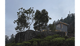 LEOPARD ROCK: A MAGICAL NILGIRIS HOME,PANAPARA ESTATE, TAMIL NADU - Prime Properties