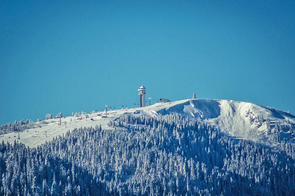 Blick auf den Gipfel des Feldbergs im Schwarzwald