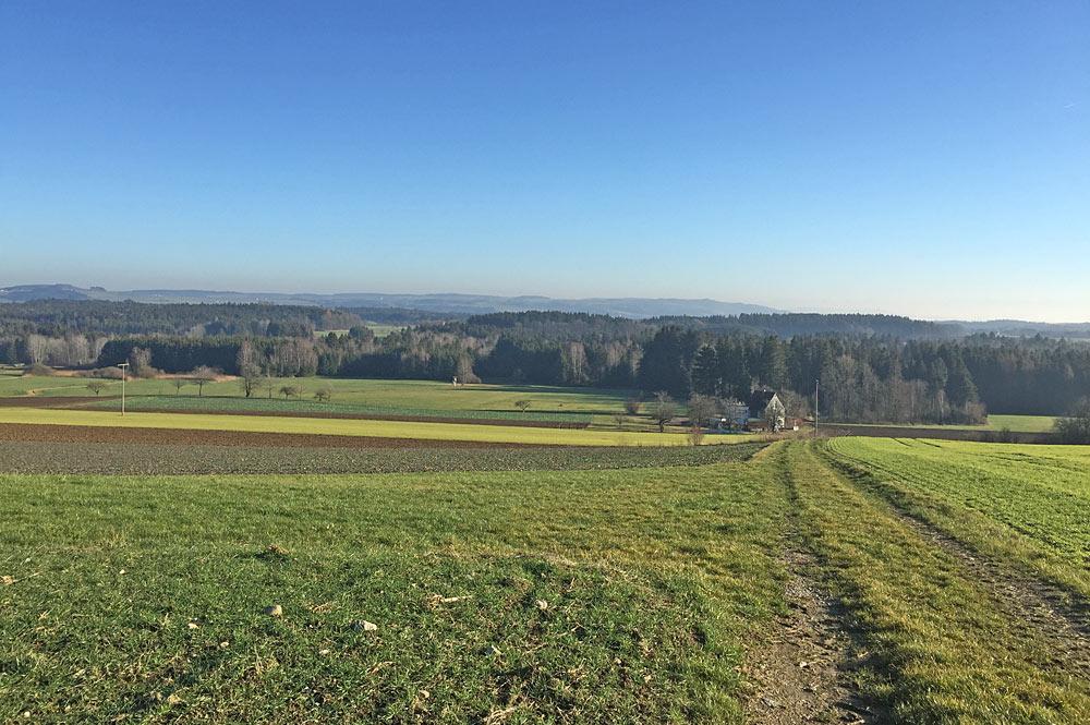 Blick über das Ruhestetter Ried bei Herdwangen-Schönach