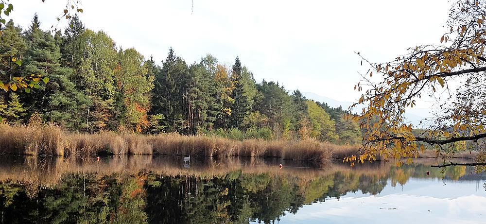 Blick auf den Vahrner See bei Vahrn