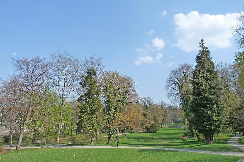 Bäume und Wiesen im Prinzengarten von Sigmaringen