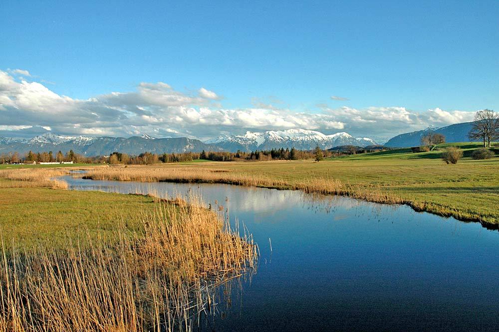 Moorlandschaft bei Uffing am Staffelsee