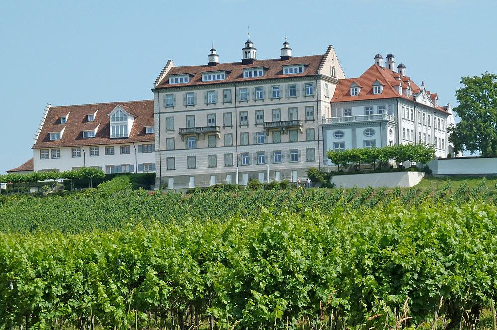 Blick auf Schloss Kirchberg inmitten von Weinbergen in Immenstaad am Bodensee