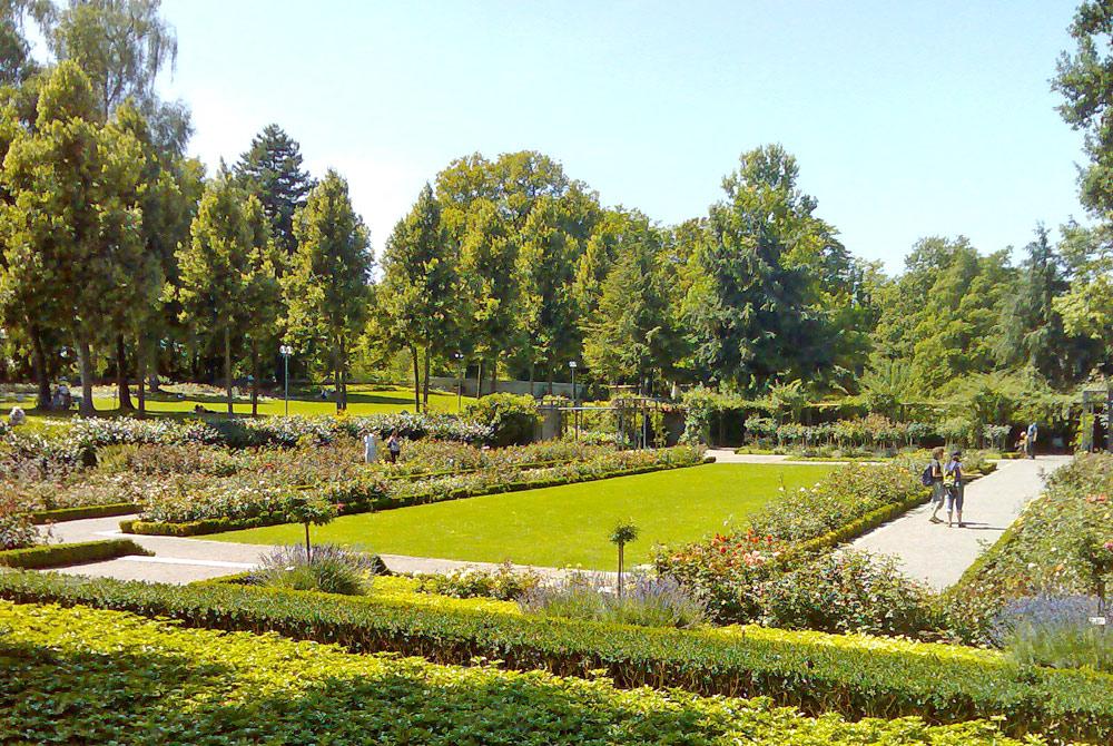 Teilansicht des Berner Rosengartens mit Beeten und Bäumen