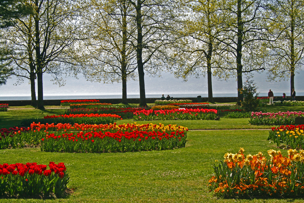 Tulpenfest in Morges