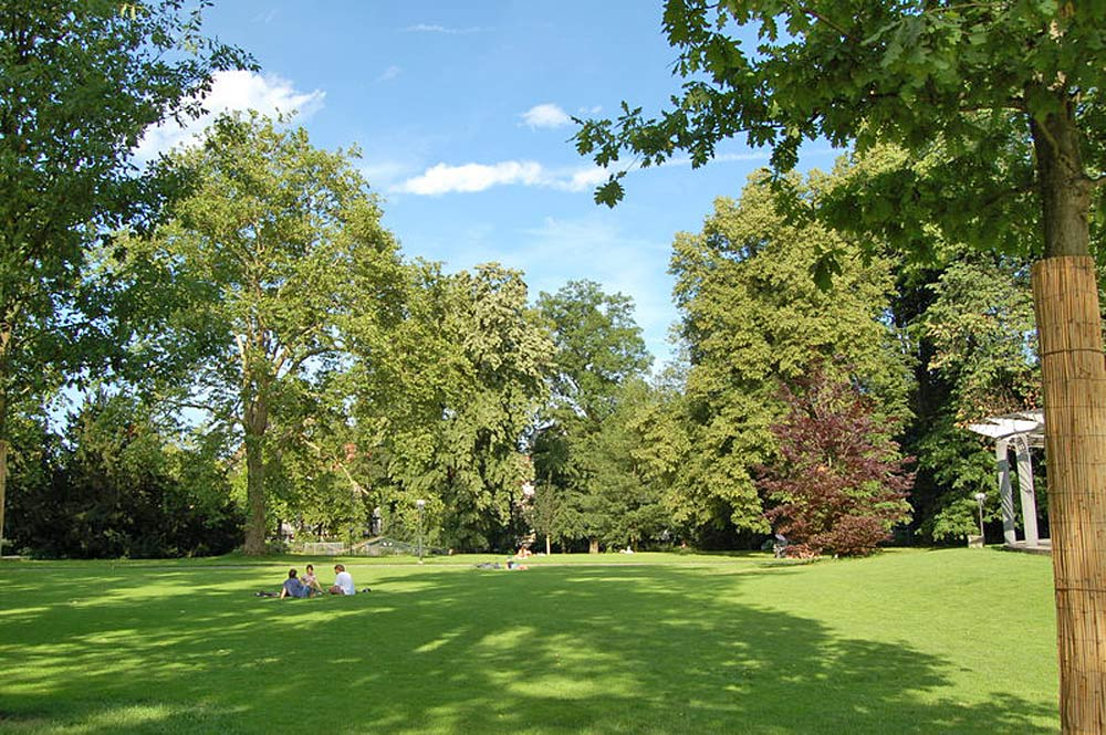 Wiese im Stadtpark von St. Gallen