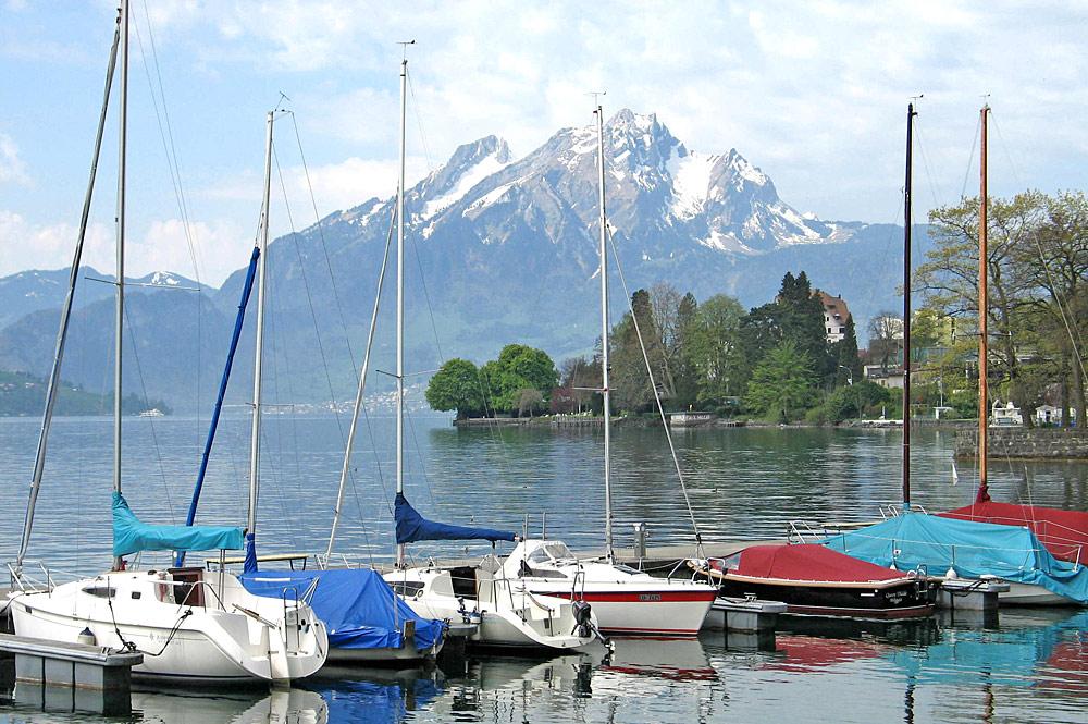 Segelboote im Hafen von Weggis am Vierwaldstättersee